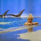 Dolphin House Serviced Apartments - Inhouse Pool