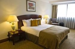 Sanctum Serviced Deluxe 1 Bedroom Apartments - Soothing Bedroom