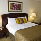 Sanctum Serviced Superior 1 Bedroom  apartments