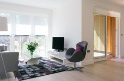 Banyan Wharf Apartment - Sleek Lounge